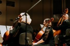 Orkiestra Symfoniczna Filharmonii Śląskiej na estradzie