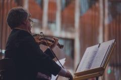 Skrzypek orkiestry w trakcie gry.