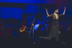 Sinfonicado, 21 stycznia 2017, fot. W. Mateusiak